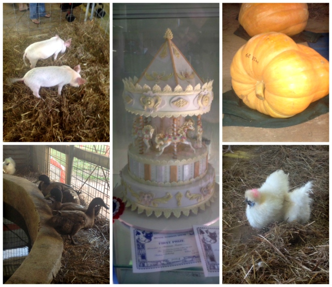 Royal Darwin Show Collage 1